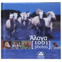 Horse - 1001 Photos - Book