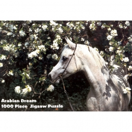 "Puzzle ""Arabian Dream"""