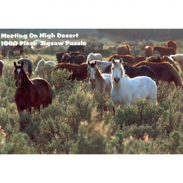 "Puzzle ""Meeting on High Desert"""