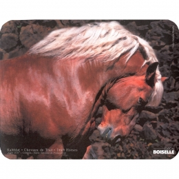 "Mouse pad ""Heavy Horse"""