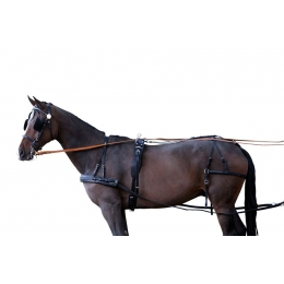 """Σετ Άμαξας για Μονό Άλογο """"Standard"""""""