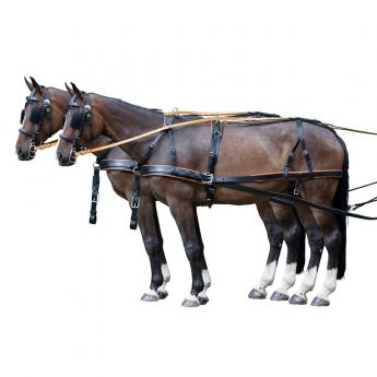 Σετ Άμαξας Δύο Αλόγων