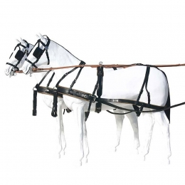 Marathon Harness, Carriage pair