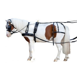 "Single harness PFIFF ""Mini Shettland Pony"""