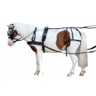 "Single harness PFIFF ""Mini Shettland Pony"""