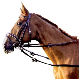 Side Reins, leather