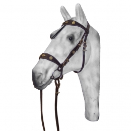 "Western Bridle ""Portugal"""