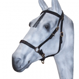 Leather Bridle / Halter