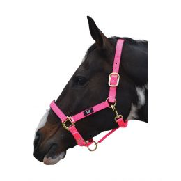 Grand Prix Head Collar Hy