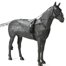 Trotting Harness PVC