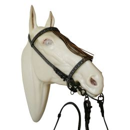 "Spanish Bridle ""Economy"""