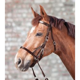 "Bitless Bridle ""STAR 2"""