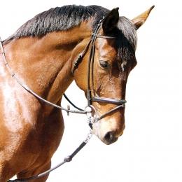 Horse Training Aid Strap, plastic