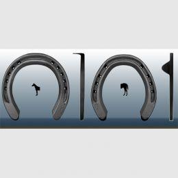 Horseshoes CENTURY SUPPORT
