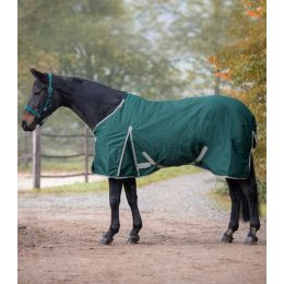 Turnout Rug Economic, 100g