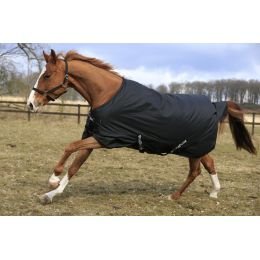 Winter Blanket RugBe IceProtect 200