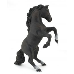 """Black Horse """"Reared Up"""""""